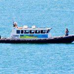 Cleddau River Boat Trip