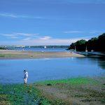 Sandy Haven